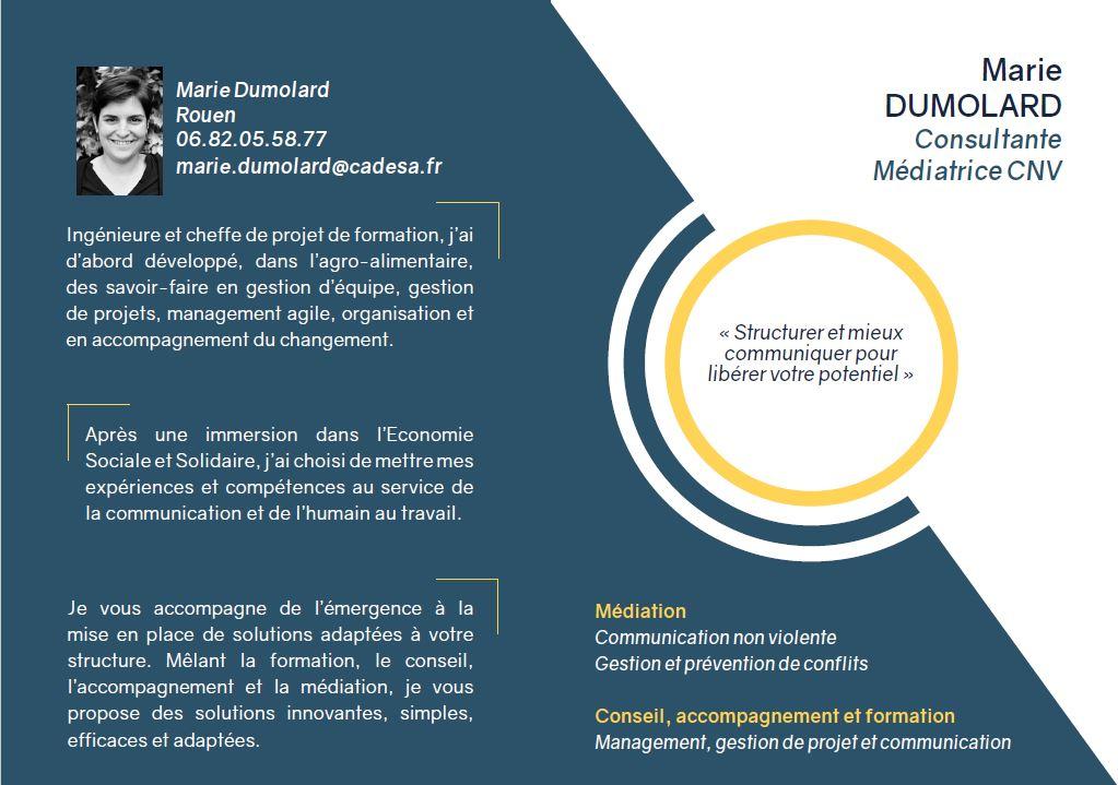 plaquette brochure design mise en page graphisme communication illustration tapa idée marie dumolard